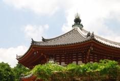 興福寺(こうふくじ)は、奈良県奈良市登大路町(のぼりおおじちょう)にある、南都六宗の一つ、法相宗の大本山の寺院である。南都七大寺の一つに数えられる。藤原氏の祖・藤原鎌足とその子息・藤原不比等ゆかりの寺院で、藤原氏の氏寺であり、古代から中世にかけて強大な勢力を誇った。